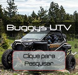 Pesquisar Buggys e UTVs